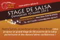 Stage de découverte de la salsa portoricaine et des danses latino-caribéennes