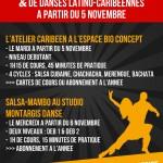 Cours de salsa et de danses latino-caribéennes 2013-2014