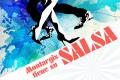 montargis_salsa_2014